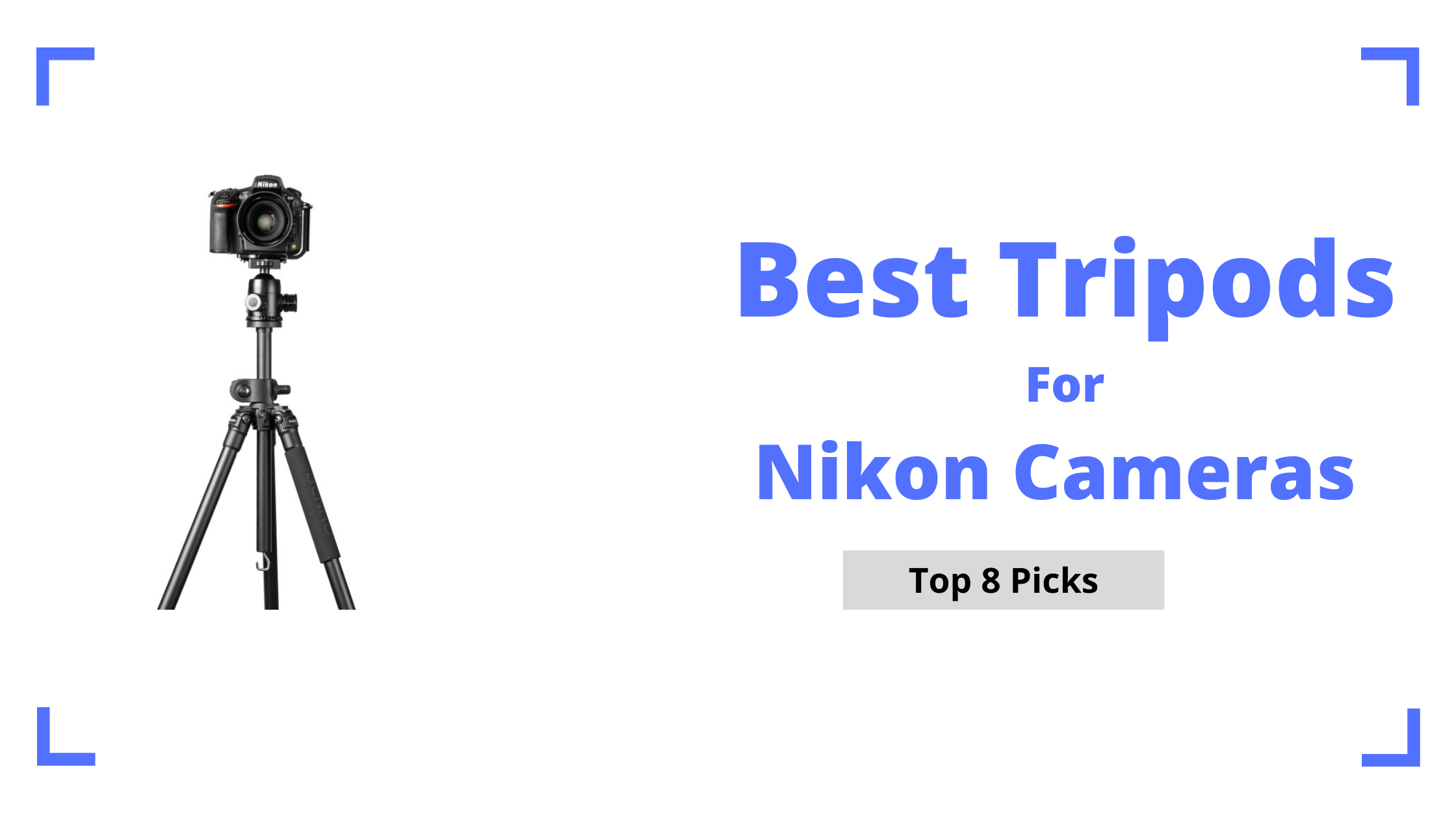 Best Tripods for Nikon